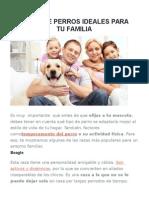 Razas de Perros Ideales para tu Familia