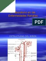 Clase 2.1 - Función Renal