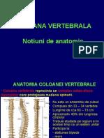 2. Notiuni de anatomie normala a coloanei vertebrale si corelatii radio-imagistice.ppt