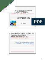 Fundamentos Para o Cálculo Do Tamanho Amostral Na Abordagem Quantitativa [Modo de Compatibilidade]