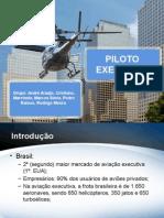 Piloto Executivo