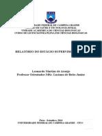 Relátório. Leonardo IV 2014.1