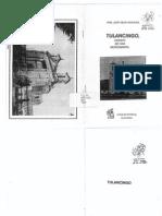 Tulancingo, ensayo de una monografía