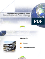 Challenges and Opportunities to Develop Jatropha Plantation with Farmer in Indonesia