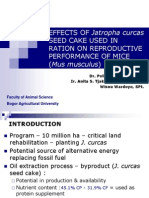 Effect of Jatropha curcas Seed Cake Used in Ration on Reproductive Performance of Mice (Mus musculus)