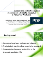 Reproductive Succes and Pollination System of Physic nut (Jatropha curcas L.) in Pakuwon, West Java