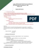 Fise Sinteza Biologie Vegetala Si Animala 2012