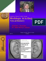 Morfología de La Oreja Ejercicio Preliminar.