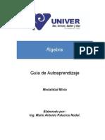 Guía Algebra Final 15082011ok PAG. 98
