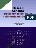 Polimorfismo Del DNA