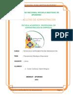 TECNICAS E INSTRUMENTOS DE ORGANIZACION.docx