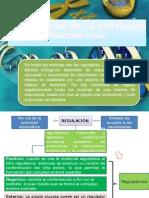 Regulación de La Actividad Enzimatica Grupo 3
