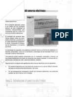 E_Commerce_Basico.pdf