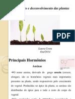 Bioquimica e Fisiologia Vegetal Aula Hoje (1)