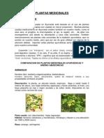 PLANTAS-MEDICINALES Ayurvedicas y Andino Amazonicas-comparación