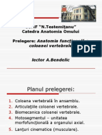 Anatomia Coloanei Vertebrale