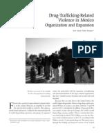 YAÑEZ Drug-Trafficking marzo 2009