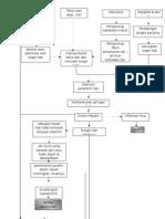 pathway sirosis hepatis kelompok 12.docx
