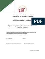 Organización, gobierno y financiación de una Federación Deportiva Andaluza