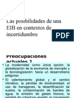EIB AYACUCHO.pptx