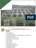 La Biomasa Del Olivar Como Fuente Energética y de Bioproductos. JM Romero-García