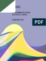 Agiel - Fenomenologia Estructural Operativa