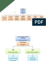 Organogram Marketing & Sales (OBS Pharma)