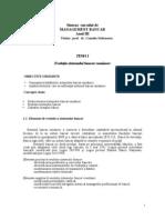 Management Bancar BV an III Sinteze