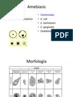 Enfermedades producidas por protozoarios -  Amebas Giardia Balantidium.pdf