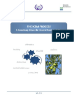 ICZM Process