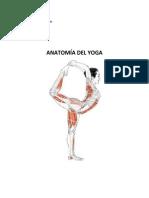 Anatomía Del Yoga