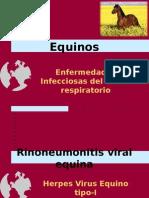 Rinoneumonitis 2012.ppt