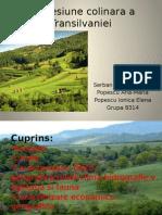 Depresiune Colinara a Transilvaniei
