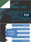 Asuhan Keperawatan Spinal Cord