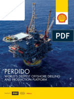 Shell Perdido Article PDF
