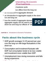 Economic Fluctuations