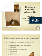 parasites in camelids webpage