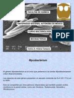 Micobacterium 2014