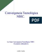 Convergencia NBIC