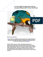 How to Tame Your Wild or Aggressive Parrot