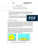 FLOTACION DE OXI MINERALES.doc
