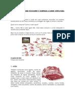 o Mapa Do Boi - Como Escolher e Comprar a Carne Certa Para Sua Receita