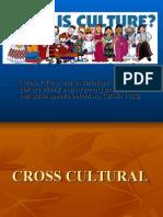 CrossS (1)