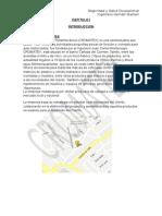 Proyecto Final de Higiene y Seguridad (2)