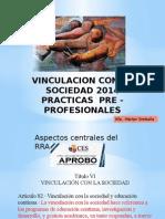 Lineamientos de la Práctica pre profesional