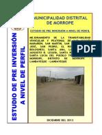 perfil de calles.pdf