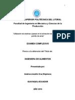 ANDREA CRUZ E. Indice Para Tesis (CONDENSADO) Correcion