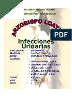 Aaa Infecciones Urinarias 7h