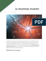 Cuántas Neuronas Mueren Al Día