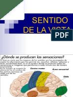 clasesentidodelavista-130802084012-phpapp02